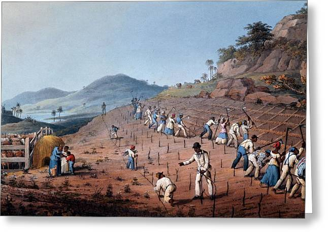 Slaves Greeting Cards - Breaking Up The Land, From Ten Views Greeting Card by William Clark