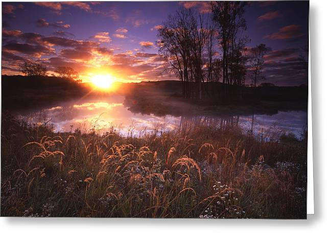 Hack-ma-tack National Wildlife Refuge Greeting Cards - Breakthrough Greeting Card by Ray Mathis
