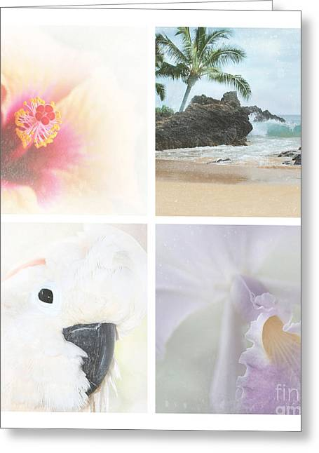 Cattleya Orchid Greeting Cards - Breathe . feel the wind . . . Greeting Card by Sharon Mau