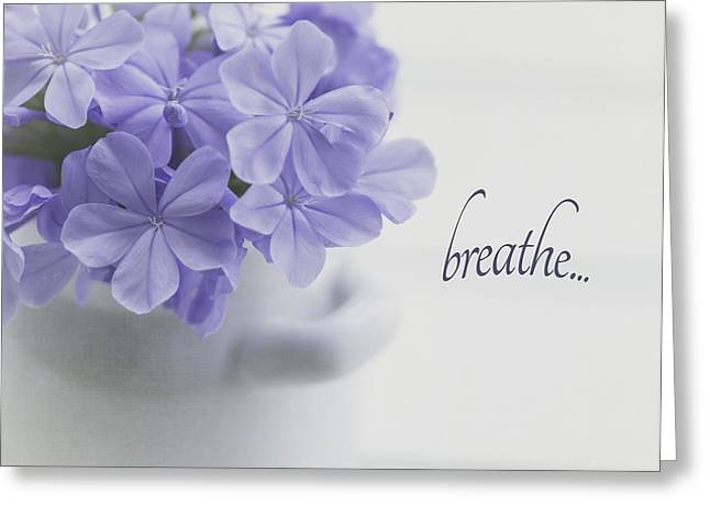 Kim Photographs Greeting Cards - Breathe Greeting Card by Kim Hojnacki