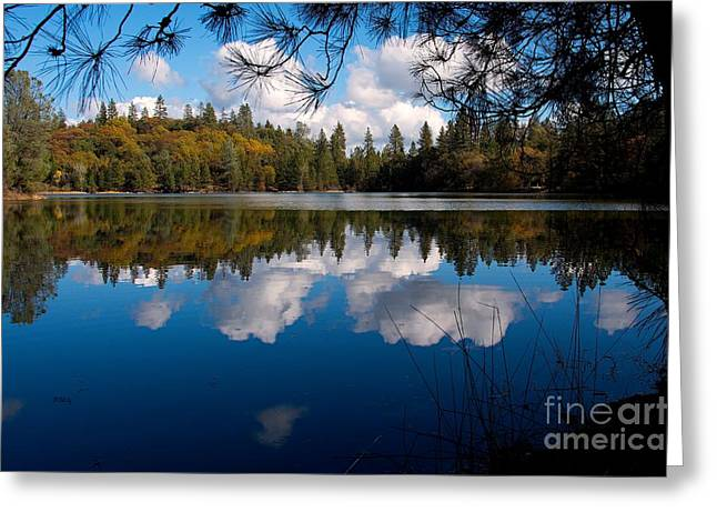 Reflecting Water Greeting Cards - Breathtaking Tranquility Greeting Card by Patrick Witz