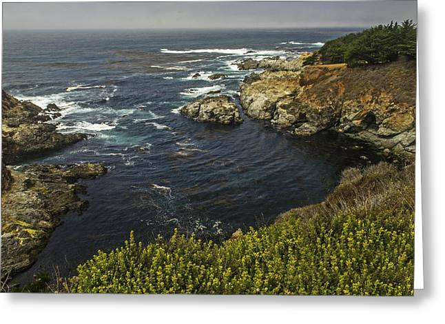 Coast Highway One Greeting Cards - Breathtaking View From The Pacific Coast Highway   California Greeting Card by Willie Harper