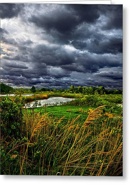 Geographic Greeting Cards - Breezily Greeting Card by Phil Koch