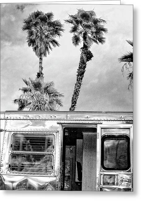 Breezy Greeting Cards - BREEZY BW Palm Springs Greeting Card by William Dey