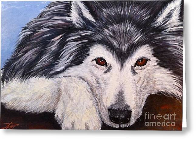 Recently Sold -  - Husky Greeting Cards - Brewser Two Greeting Card by Ana Marusich-Zanor