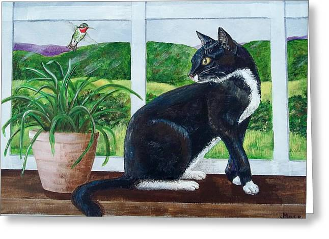 Black Cat Hills Greeting Cards - Brewster and hummingbird Greeting Card by Joan Mace