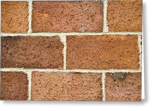 Brick Wall Greeting Card by Frank Tschakert