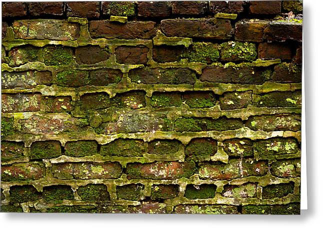 Blocks Pyrography Greeting Cards - Brick wall with moss Greeting Card by Oliver Sved