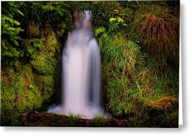 Bridal Dress. Waterfall At Benmore Botanical Garden. Nature Of Scotland Greeting Card by Jenny Rainbow