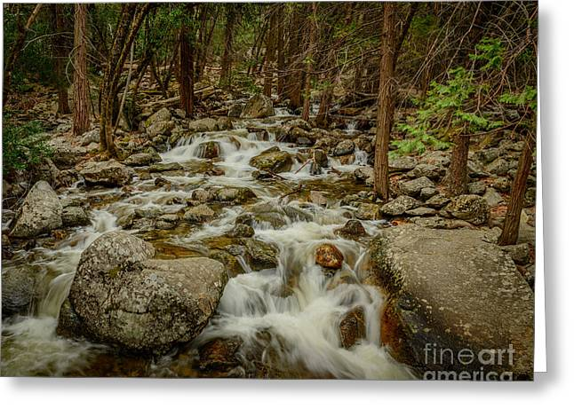 Terry Garvin Greeting Cards - Bridalveil Creek in Yosemite Greeting Card by Terry Garvin