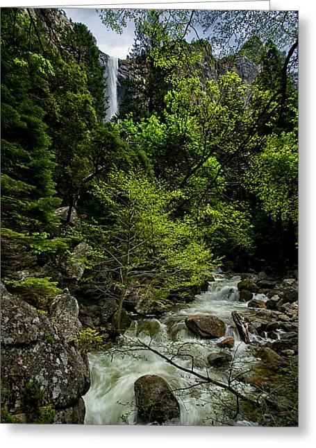 Green Day Greeting Cards - Bridalveil Falls and Runoff Greeting Card by Cat Connor