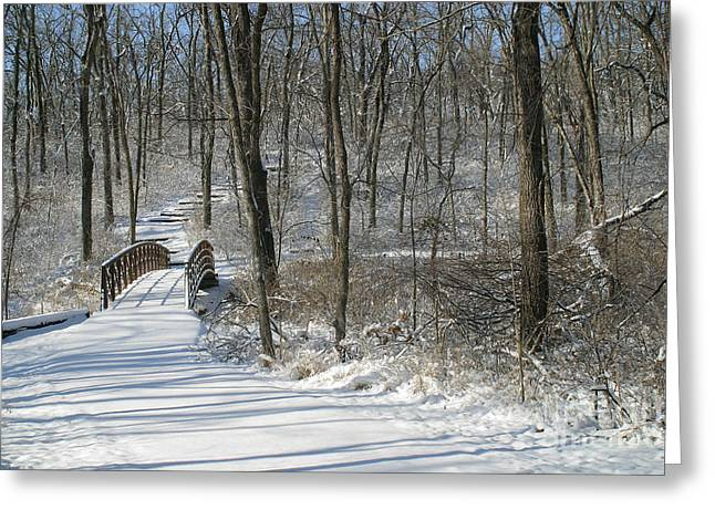 Gingrich Photo Greeting Cards - Bridge 0009 Greeting Card by Gary Gingrich Galleries