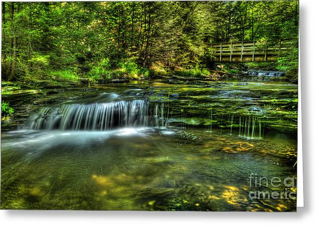 Moss Green Greeting Cards - Bridge and Falls Greeting Card by Paul W Faust -  Impressions of Light
