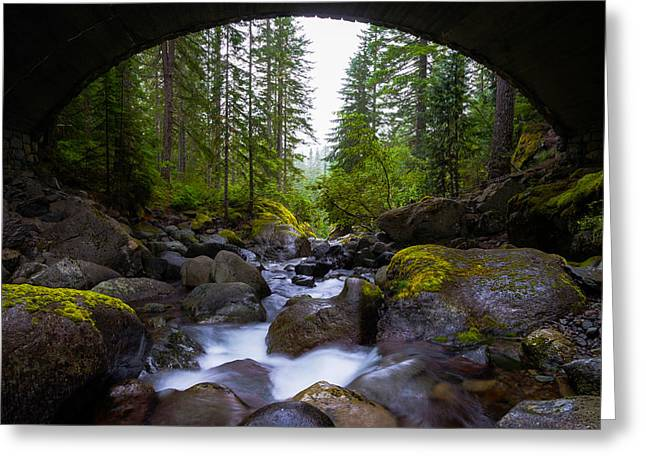 Moss Green Greeting Cards - Bridge Below Rainier Greeting Card by Chad Dutson
