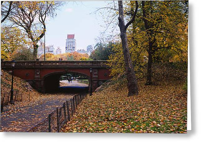 Fallen Leaf Greeting Cards - Bridge In A Park, Central Park Greeting Card by Panoramic Images