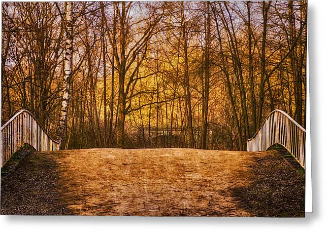 Interior Scene Photographs Greeting Cards - Bridge in Park Greeting Card by Wim Lanclus