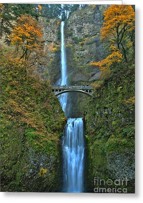 A River In Autumn Greeting Cards - Bridge In The Falls Greeting Card by Adam Jewell