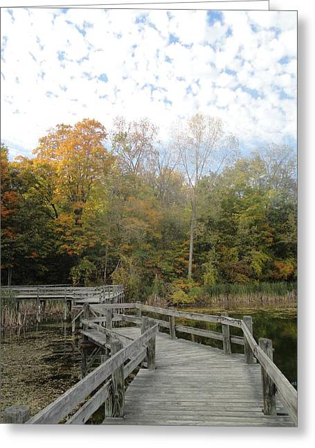 Photos Of Autumn Greeting Cards - Bridge into Autumn Greeting Card by Guy Ricketts