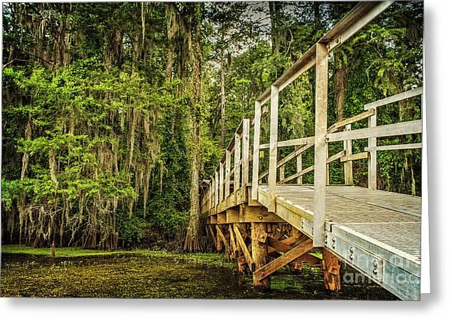 Tamyra Ayles Greeting Cards - Caddo Lake Bridge into the Forest Greeting Card by Tamyra Ayles