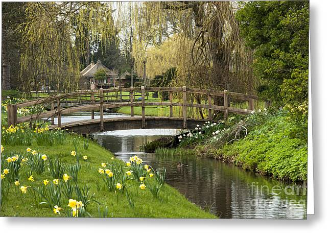 Weeping Digital Art Greeting Cards - Bridge of Delight Greeting Card by Donald Davis