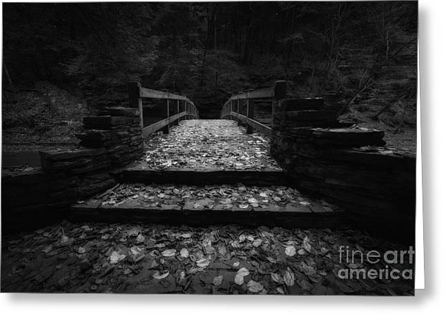 Buttermilk Falls Greeting Cards - Bridge of Gold BW Greeting Card by Michael Ver Sprill