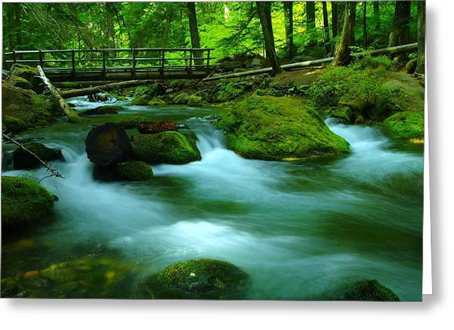Moss Green Greeting Cards - Bridge Over The Tananamawas Greeting Card by Jeff  Swan
