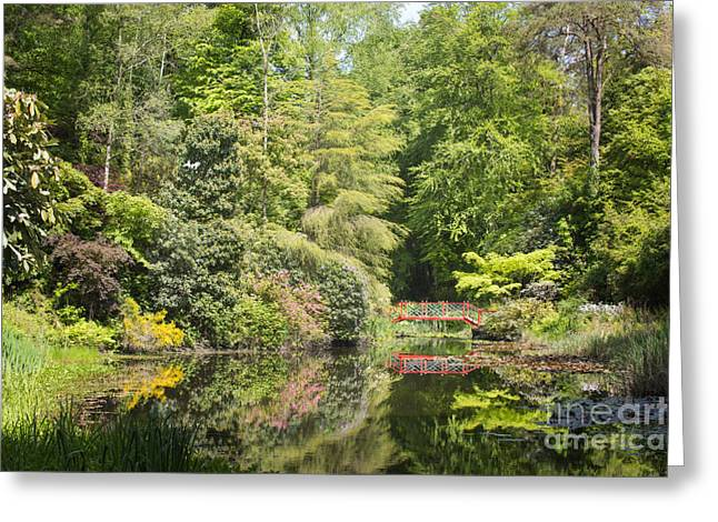 Calm Waters Greeting Cards - Bridge Over Water Greeting Card by Amanda And Christopher Elwell