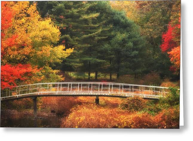 Bridge To Autumn Greeting Card by Karol Livote