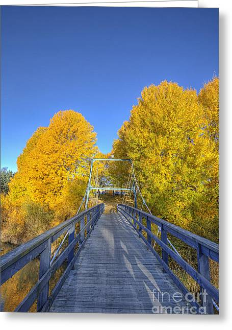 Moment Greeting Cards - Bridge to autumn Greeting Card by Veikko Suikkanen