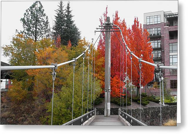 Spokane Greeting Cards - BRIDGE to FALL COLOR in SPOKANE Greeting Card by Daniel Hagerman