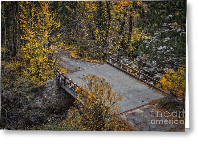 West Fork Greeting Cards - Bridge To The Past Greeting Card by Mitch Shindelbower