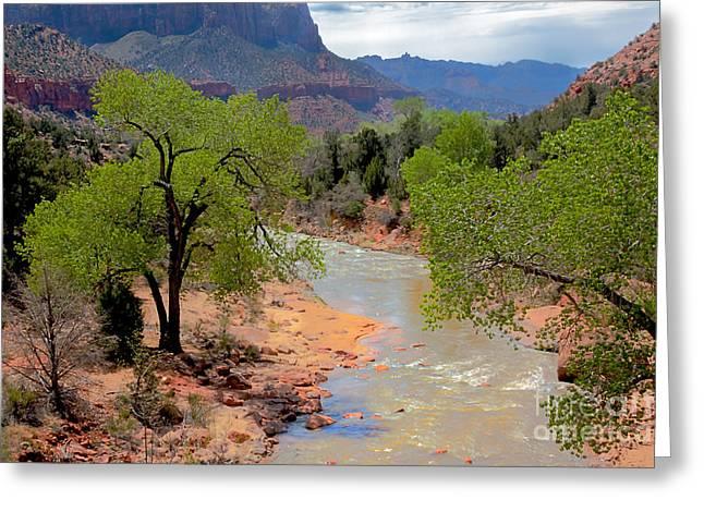 Navajo Basin Greeting Cards - Bridge View Of The Virgin River Greeting Card by Robert Bales