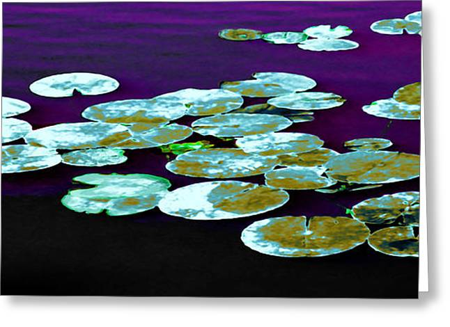 Lilly Pads Greeting Cards - Bridges Greeting Card by David Walker
