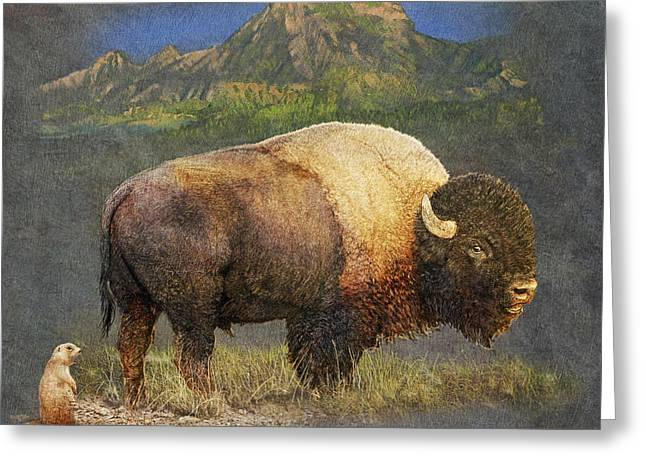 Misunderstanding Greeting Cards - Brief Altercation - Bison And Prairie Dog Greeting Card by R christopher Vest