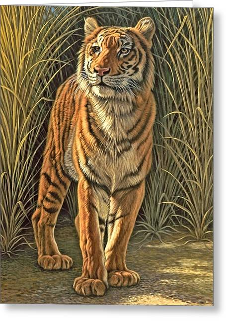 Wildlife Greeting Cards - Brief Appearance Greeting Card by Paul Krapf