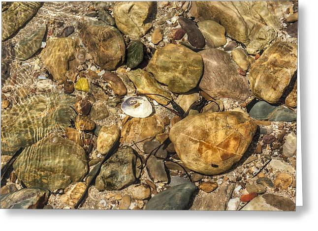 Beach Stones. Colorful Rocks Greeting Cards - Bright Colored Stones in a Rock Pool  Greeting Card by Nomad Art And  Design