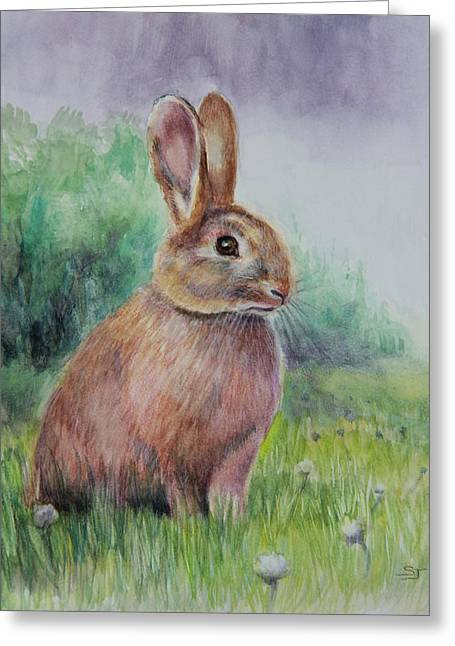 Hare Greeting Cards - Bright Eyes Greeting Card by Susan Jenkins