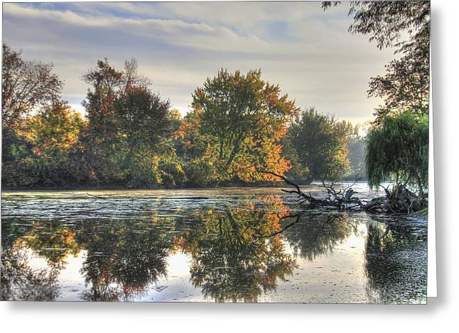 Pond In Park Greeting Cards - Bright Morning Light Greeting Card by Richard Gregurich