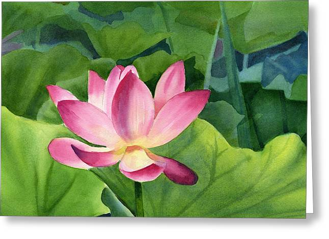 Lotus Lily Greeting Cards - Bright Pink Lotus Blossom Greeting Card by Sharon Freeman