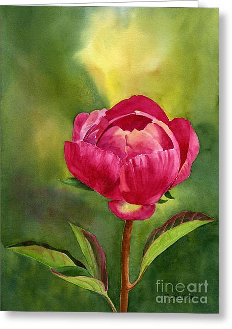 Close Up Floral Paintings Greeting Cards - Bright Red Peony Blossom Greeting Card by Sharon Freeman