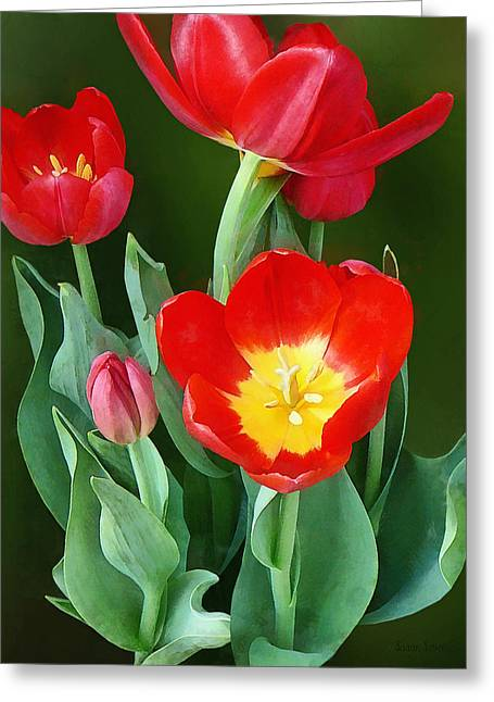 Tulips Greeting Cards - Bright Red Tulips Greeting Card by Susan Savad