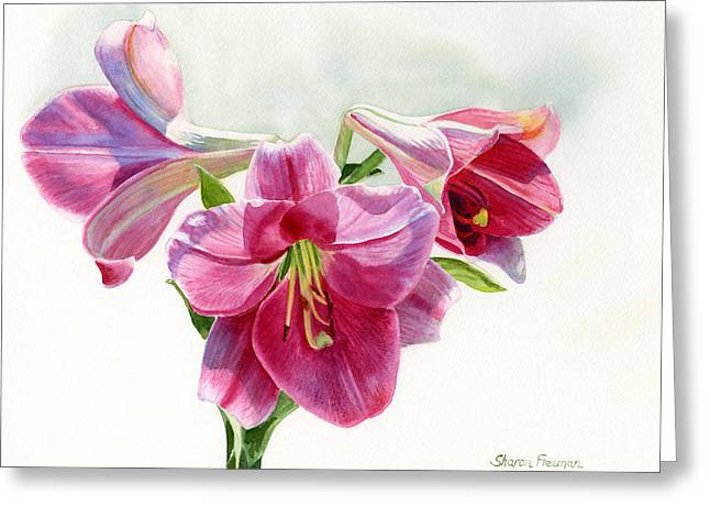 Close Up Floral Paintings Greeting Cards - Bright Rose Colored Lilies Greeting Card by Sharon Freeman
