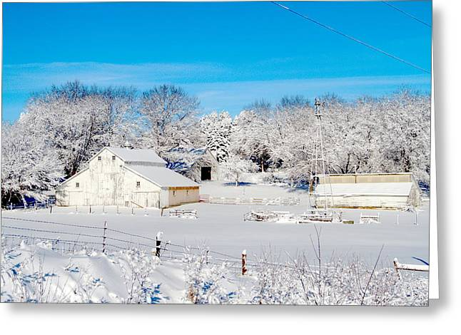 Barn Yard Greeting Cards - Bright White Greeting Card by Mark Pearson