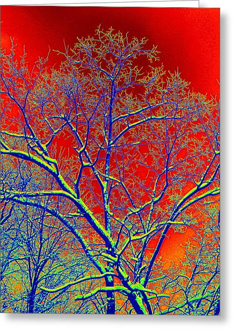 Enhanced Greeting Cards - Bright Winter Snow Scene Greeting Card by Kathy Barney