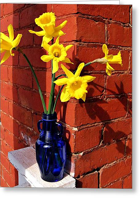 Colbalt Blue Greeting Cards - Bright Yellow Daffodils Greeting Card by Chris Berry