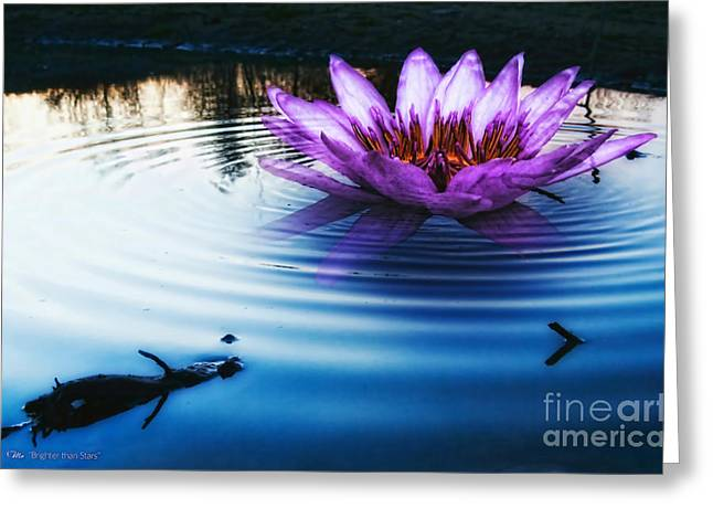 Water Lilly Greeting Cards - Brighter than Stars Greeting Card by Mo T