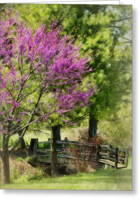 Red Bud Trees Greeting Cards - Brilliant Buds Greeting Card by Kathy Jennings
