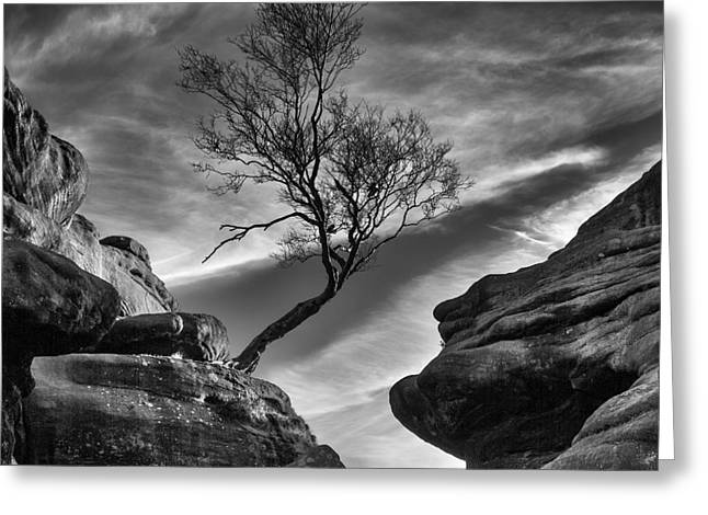 Millstone Greeting Cards - Brimham Rocks Nidderdale Yorkshire Greeting Card by John Potter