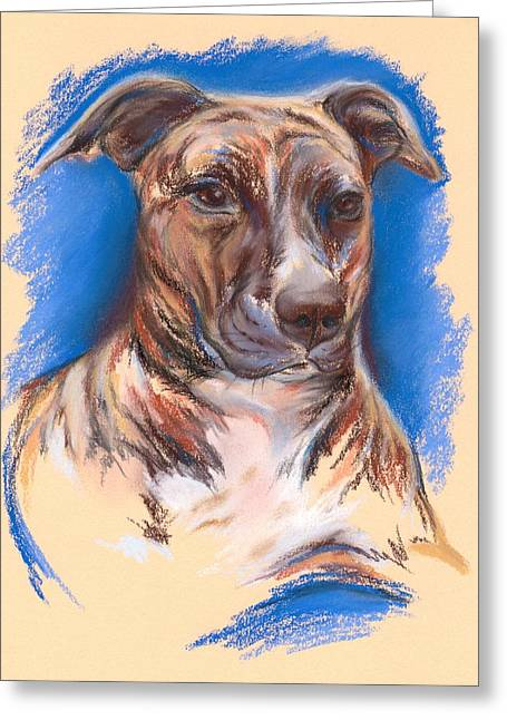 Bully Pastels Greeting Cards - Brindle Pit Bull Portrait Greeting Card by MM Anderson