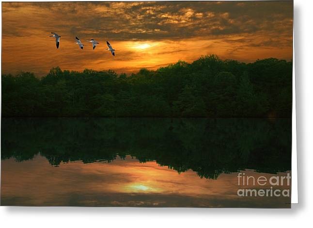 Sunset Prints Greeting Cards - Bring On The Night Greeting Card by Tom York Images